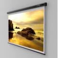 ECRAN proiectie SOPAR, manual, format 1 : 1, fixare perete | tavan, 180 x 180 cm,